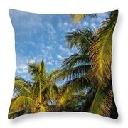 8167- Palm Tree Throw Pillow