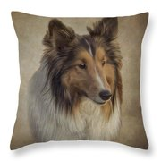 8321890 Throw Pillow