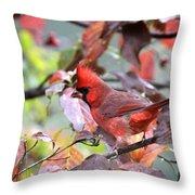 8627-001 - Northern Cardinal Throw Pillow