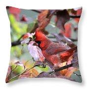 8627-002 - Northern Cardinal Throw Pillow