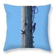 #866x Woodpecker Throw Pillow