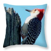 #8671 Woodpecker Throw Pillow