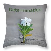 88- Determination Throw Pillow