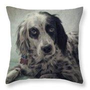 8816057 Throw Pillow
