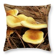 8840 Throw Pillow