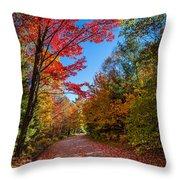 Autumn Season In Killarney Throw Pillow