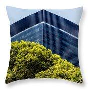 Brasil Rio De Janeiro Throw Pillow