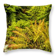 Fall Color Fern Throw Pillow