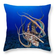 Hawaii, Day Octopus Throw Pillow