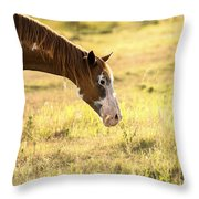 Horse In The Countryside  Throw Pillow