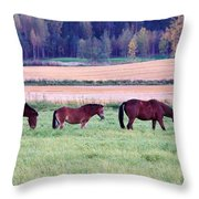 Horses Of The Fall Throw Pillow
