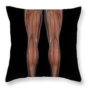 Leg Musculature Throw Pillow