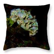 Lettuce Sea Slug Throw Pillow