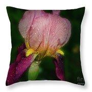 Nice Iris Throw Pillow