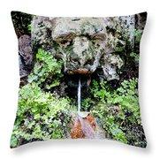 Public Fountain In Palma Majorca Spain Throw Pillow