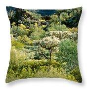 Saguaro Cactus Carnegiea Gigantea Throw Pillow