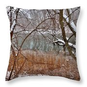 The Bass River In Winter Throw Pillow