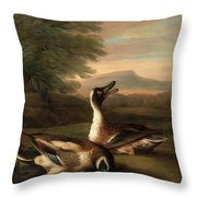 Two Drakes In Landscape Throw Pillow