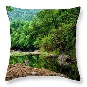 Williams River Summer Throw Pillow