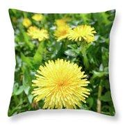 Yellow Dandelion Flowers Throw Pillow