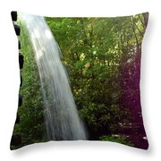 900 Throw Pillow