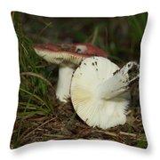 9061 Throw Pillow