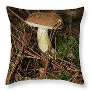King Bolete 9062 Throw Pillow