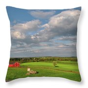 90th Pennsylvania Throw Pillow