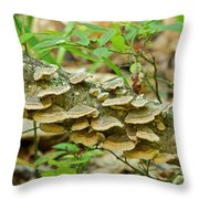 Polypores 9155 Throw Pillow