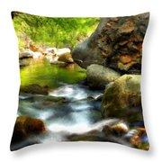 Landscape Jobs Throw Pillow