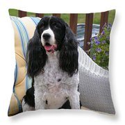 #940 D1034 Farmer Browns Springer Spaniel Throw Pillow