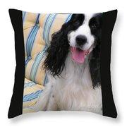 #940 D1037 Farmer Browns Springer Spaniel Happy Throw Pillow