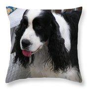 #940 D1039 Farmer Browns Springer Spaniel Fresh Throw Pillow