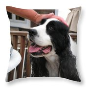 #940 D1041 Farmer Browns Springer Spaniel Good Girl Good Boy Attaboy Throw Pillow