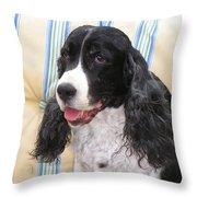 #940 D1042  Farmer Browns Springer Spaniel Throw Pillow