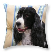 #940 D1043  Farmer Browns Springer Spaniel Smile Hidden Heart Throw Pillow