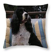 #940 D1045  Farmer Browns Springer Spaniel Throw Pillow