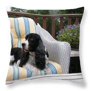 #940 D1052 Farmer Browns Springer Spaniel Throw Pillow