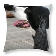 #940 D1060 Farmer Browns Springer Spaniel Throw Pillow