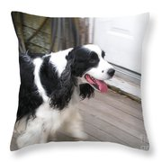 #940 D1065 Farmer Browns Springer Spaniel Time For A Visit Throw Pillow