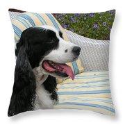 940 D1069 Farmer Browns Springer Spaniel Throw Pillow