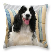 #940 D1076 Farmer Browns Happy For You Throw Pillow