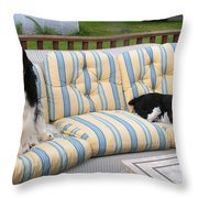 #940 D1082 Farmer Browns Separate But Always Together Throw Pillow