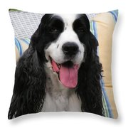 #940 D1090 Farmer Browns Springer Spaniel Throw Pillow