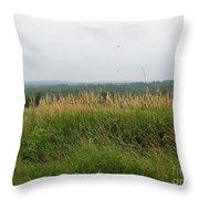 #940 D1096 Farmer Browns West Newbury Throw Pillow