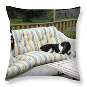 #940 D1094 Farmer Browns Springer Spaniel Together Throw Pillow