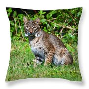 9701 Throw Pillow