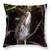 A Baby Green Heron Stretched Out Peering Into The Camera Throw Pillow
