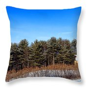 A Barn In The Snow In Maine Throw Pillow