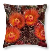 A Barrel Cactus Is Blooming Throw Pillow